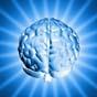 Біотехнологічні компанії Індії і США запустили проект по регенерації мертвого мозку