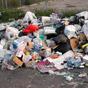Кияни можуть скаржитися на неприбране сміття