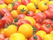 Турция завалила украинский рынок дешевыми помидорами