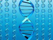 Ученые взломали компьютер с помощью ДНК