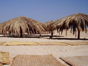 Туристическая отрасль Египта потеряла более 2 миллиардов