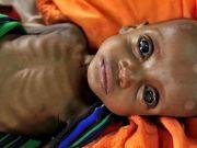 Число голодающих в мире за минувший год увеличилось на 28 млн человек