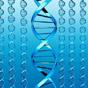 Білл Гейтс і 13 інших інвесторів вкладуть 120 мільйонів доларів у розвиток генної інженерії