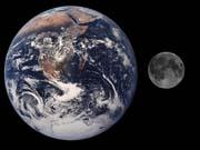 Crew Dragon: Чим є корабель SpaceX, на якому космічні туристи можуть вирушити до Місяця