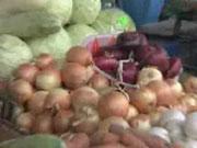 В Украине падают цены на лук
