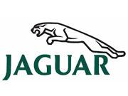 Водители Jaguar смогут платить за бензин, не выходя из авто (видео)