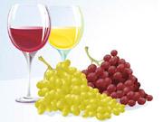 Крупнейший производитель вин в Украине хочет воспользоваться запретом на ввоз молдавских вин в Россию