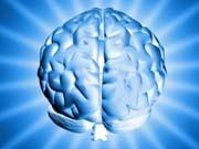Технология 3D-печати нейросетей мозга получила €3,3 млн на развитие