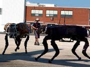 Google выставила на продажу Boston Dynamics