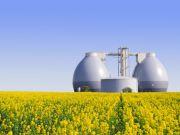 Украинский банк выдал 10 миллионов евро кредита на строительство биогазовых заводов