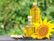 В Кабмине анонсировали значительное снижение цен на подсолнечное масло и назвали сроки