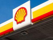 Shell построит в Роттердаме один из крупнейших в Европе заводов по выпуску биотоплива