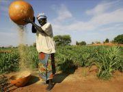 Кредиты без границ: как американские p2p-площадки помогают развиваться африканскому бизнесу