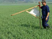 Кабмин предлагает провести в 2018 году всеукраинскую оценку сельхозземель