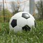 МВС виявили незаконну діяльність 35 футбольних клубів (відео)