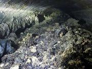 Биологи научились делать топливо из канализационных отходов