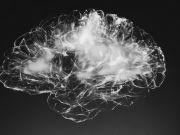 Ученые подключили человеческий мозг к компьютеру по беспроводной сети