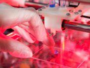 В Японії щуру успішно переcадили 3D-надруковані тканини печінки