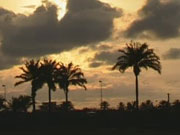 В Египте рост цен установил 30-летний рекорд