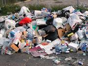 Мусоросжигательным заводам не хватает отходов