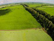 Иран хочет арендовать в Украине земли для выращивания сельскохозяйственных культур