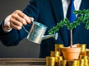 В Украине представили сервис для потенциальных инвесторов