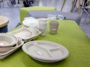 Украинцы разработали экологичную одноразовою посуду