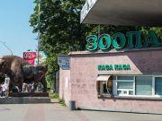 На повну реконструкцію столичного зоопарку необхідно не менше 5 років – Кличко
