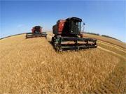 Наші сільгосптовари стануть конкурентними на ринку