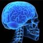 Мозковий імплант зупинить гвалтівників і самогубців
