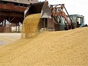 В Україні хліб не дорожчатиме