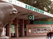 Ремонт київського зоопарку оцінили в 530 мільйонів