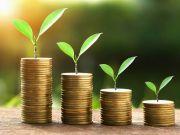 Банки в прошлом году повысили процентные ставки по гривневым депозитам
