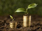 Нардепы предлагают ограничить покупку юрлицами свыше 500 га земли