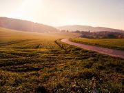 Мінекономіки підготувало 35 сценаріїв запровадження ринку землі