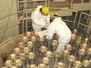 Украинские АЭС летом ожидают стресс-тесты