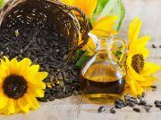 Україна знизила обсяг виробництва соняшникової олії
