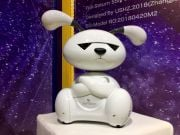 Китайський студент розробив робота-собаку для одиноких людей