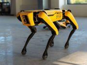 Hyundai придбав виробника роботів Boston Dynamics