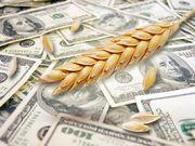 Аграрный экспорт принес Украине $11,1 млрд, – отчет Кабмина