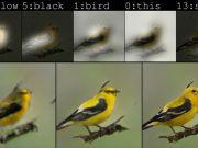 ШІ від Microsoft намалював птаха за текстовим описом