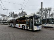 Запоріжжя отримало перші одинадцять білоруських автобусів