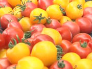 Украина на треть увеличила валютные заработки на овощах