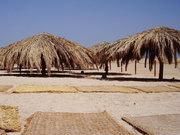 Туристична галузь Єгипту втратила більше 2 мільярдів