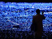 Лампочка Накамуры - за что дают Нобелевскую премию (ФОТО, ВИДЕО)