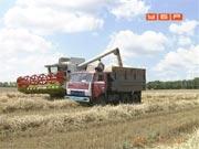 Що готує українцям вітчизняна економіка