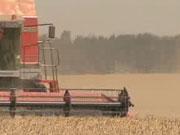 Фермеры и банки - борьба за выживание