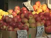 Україна встановила рекорд у експорті яблук