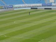 В Житомирі за 23 млн грн реконструюють стадіон «Спартак»