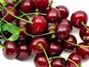 В прошлом году в Украине вырастили почти 133 тысячи тонн ягод